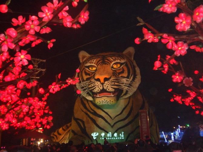 2010自贡国际恐龙灯会-1