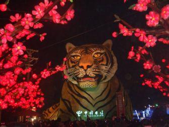 2010自贡国际恐龙灯会