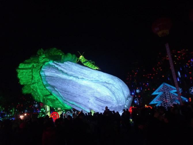 2011自贡国际恐龙灯会-1