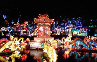 2014自贡国际恐龙灯会